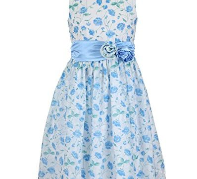 Emma Riley Girls' Flower Dress with Satin Sash and Rosettes 4 Blue