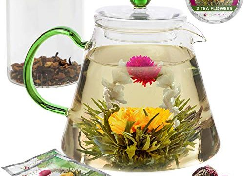 Blooming Tea Flowers Included 2 – Blooming Oasis – Teabloom Stovetop Safe Glass Teapot with Loose Tea Infuser 34 oz