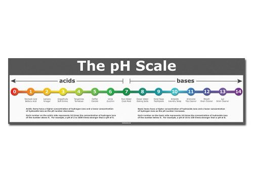 The pH Scale – 36″ x 10″ – Classroom Poster