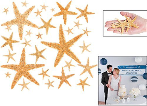 Fun Express Real Starfish Decoration 30 Piece