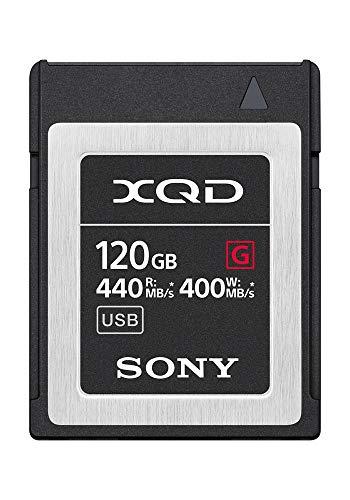 Top 10 Qdx Memory Card – SecureDigital Memory Cards