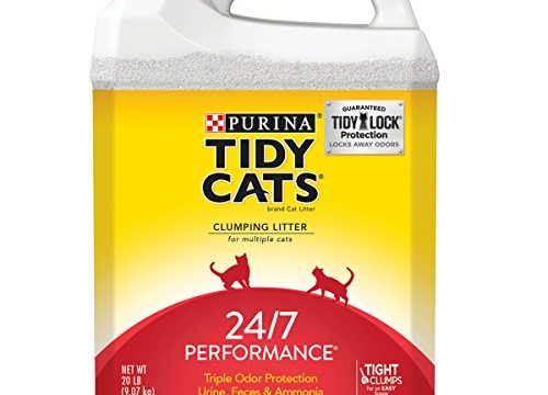 2 20 lb. Jugs – Purina Tidy Cats Clumping Cat Litter; 24/7 Performance Multi Cat Litter